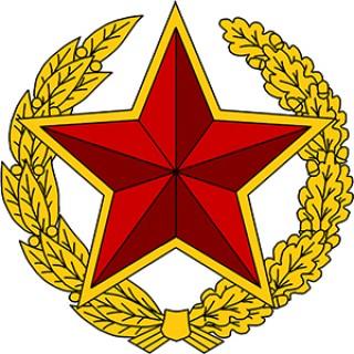 Учреждена юбилейная медаль «100 год Узброеным Сілам Рэспублікі Беларусь»