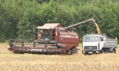 Военные приняли активное участие в уборке урожая